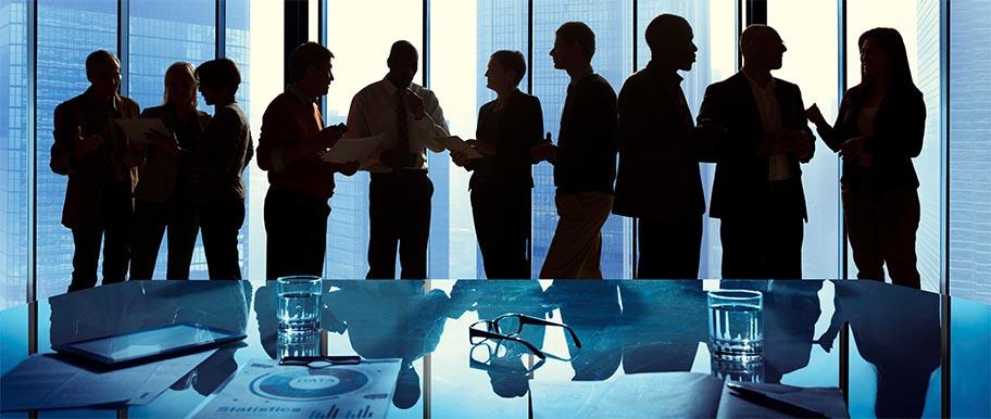 Team aziendale in riunione - WelFare Insieme
